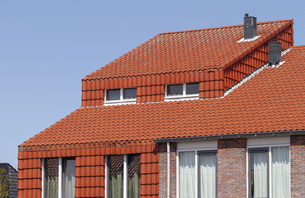 De overmijdelijke dakpannen.